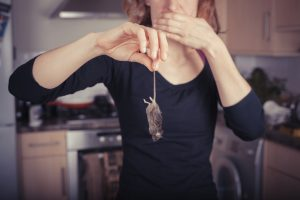 Mice in the summer: woman holding mouse by tail